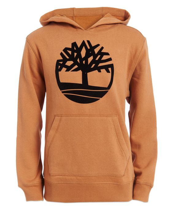 Timberland Big Boys Hoodie AS6AG0